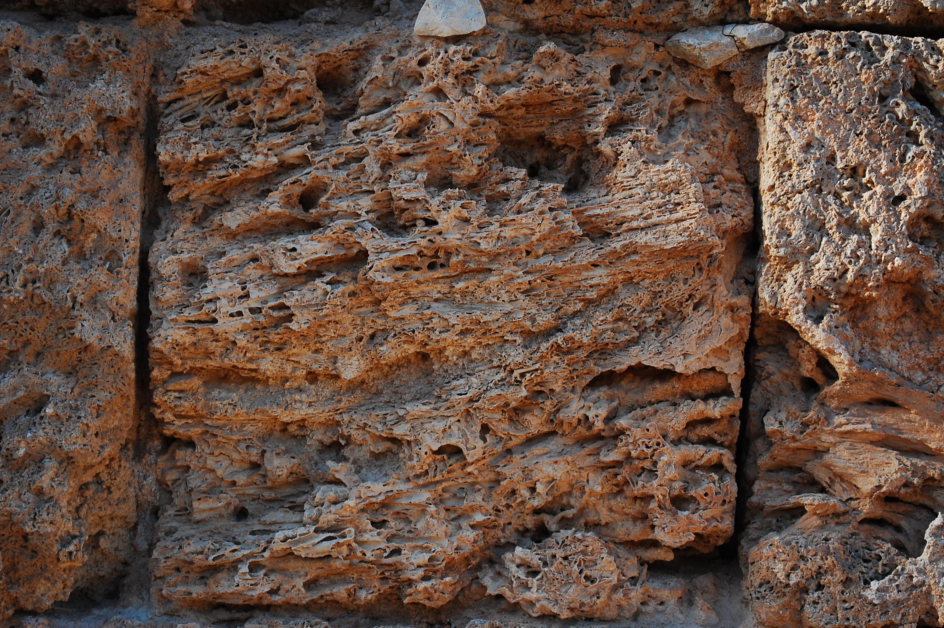 Geologia de estar por casa i cr nicas de un amonite for Travertino roca