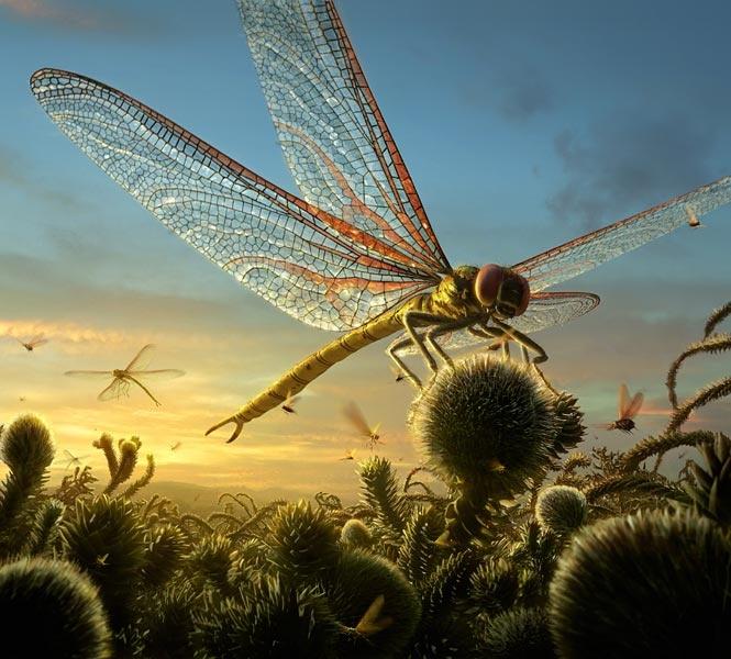 Reconstrucción de Meganeuropsis, el mayor insecto que haya sobrevolado el Planeta, y precursor de los Odonatos actuales.