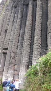 Figura 5: El mismo flujo, de cerca, donde se observa claramente la columnata de basalto. Fuente propia.