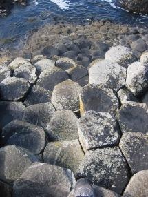 Figura 6: Columnas poligonales de los Basaltos Intermedios de Giant's Causeway. Fuente propia.