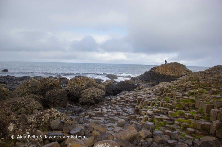 Figura 8: Promontorio de columnas de basalto de Giant's Causeway. Fuente propia.