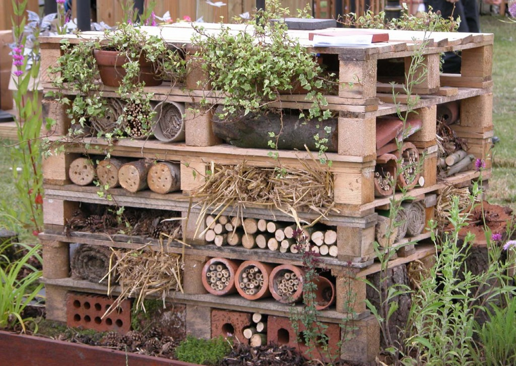 wildlife-trust-insect-hotel-1024x727