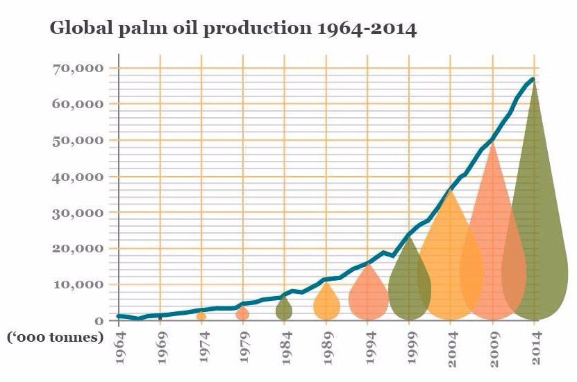 global-palm-oil-production-copy-e1499633181704.jpg