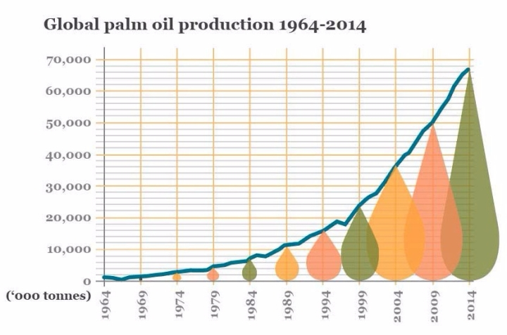 global-palm-oil-production-copy-e1499633181704.jpg